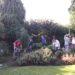 Chantier Parcs et jardins