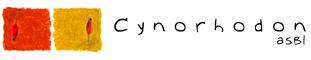 Cynorhodon ASBL